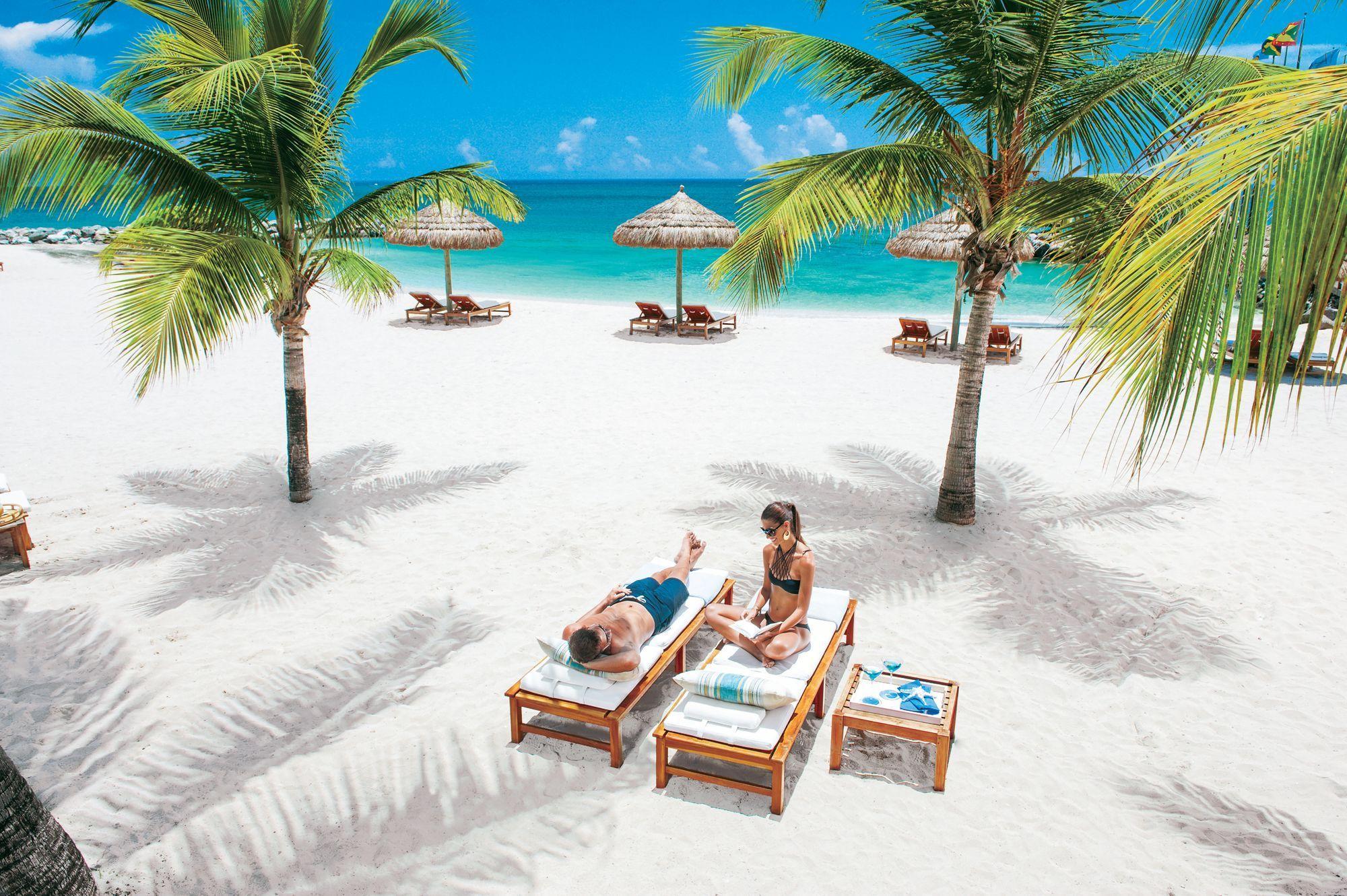 Paar sitzt auf Strandliegen. Frau hat Buch in der Hand. Auf dem Strand stehen zwei Palmen.