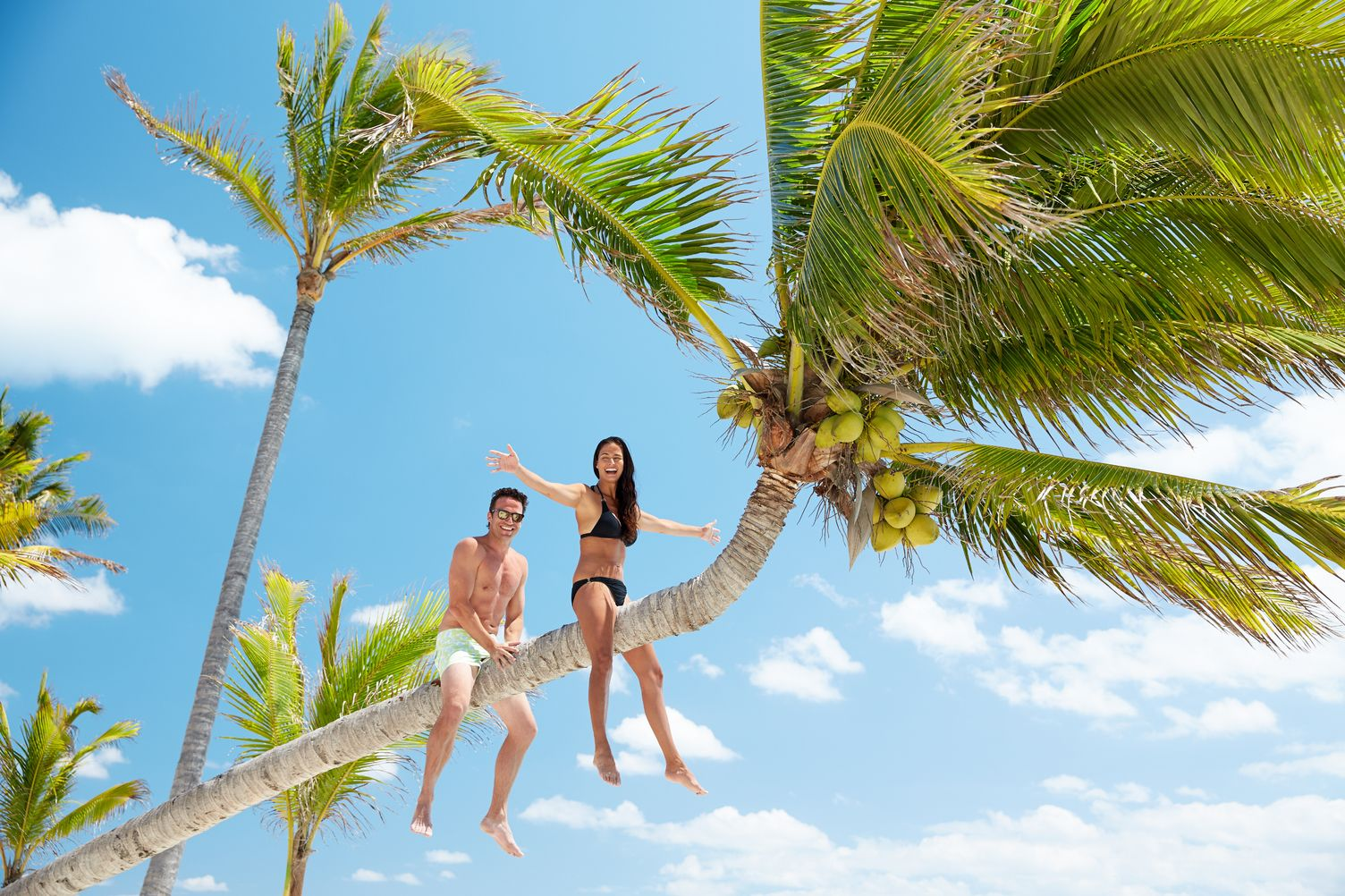 Paar sitzt auf schrägem Palmenstamm. Der Himmel ist blau. Von unten fotografiert.